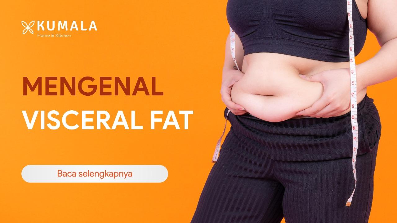 Bahaya Lemak Visceral Fat yang Harus Kamu Ketahui